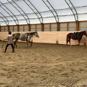 fabric building riding arena