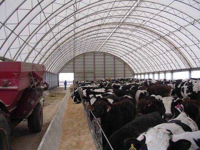 Winkler Structures livestock barn